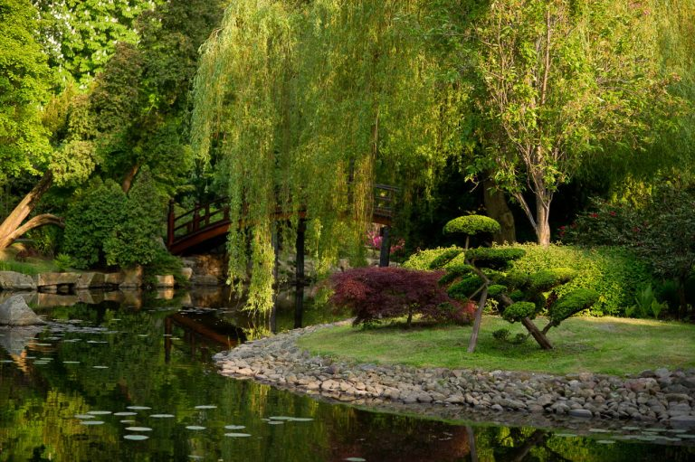 Japanese Gardening – 3 Types of Garden For Japanese Gardening